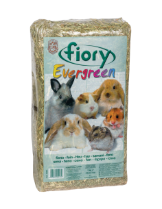 FIORY EVERGREEN SENO 30L