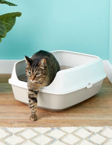 Mačje stranišče